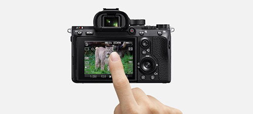sony-ilce7rm3ab-touch