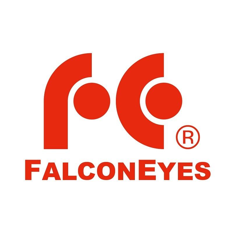 Logo FalconEyes